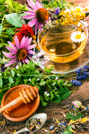 blossom honey: Cup of herbal tea with wild flowers and various herbs