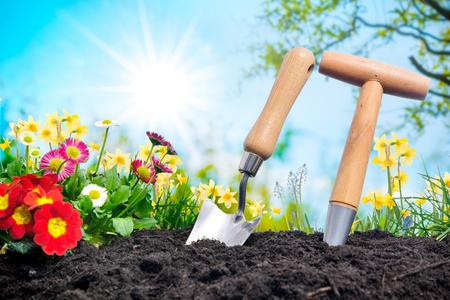 Het planten van bloemen in een tuin Stockfoto