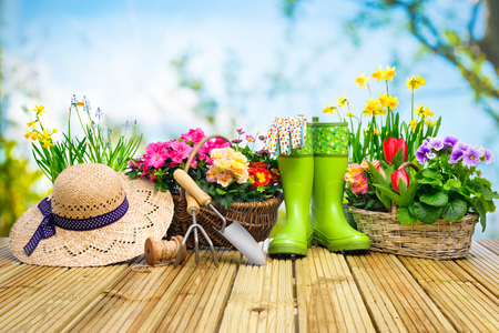 flower bed: Gardening tools and flowers on the terrace in the garden Stock Photo