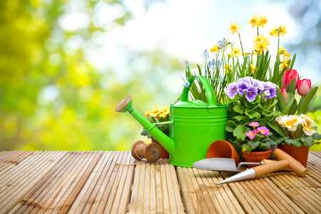 back yard: Gardening tools and flowers on the terrace in the garden Stock Photo