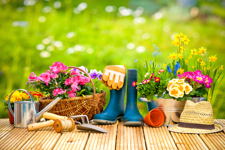 Gardening tools and flowers on the terrace in the garden Stockfoto