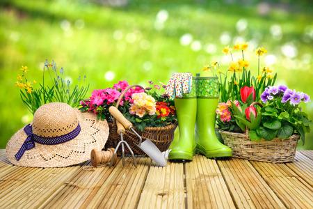 spring: Herramientas de jardinería y flores en la terraza en el jardín