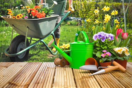 garden: Gardening tools and flowers on the terrace in the garden Stock Photo