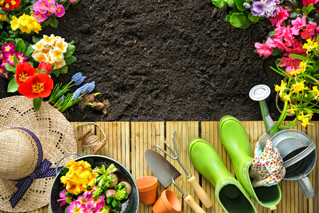 plant: Gardening tools and flowers on the terrace in the garden Stock Photo