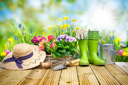 Gardening tools and flowers on the terrace in the garden Banco de Imagens