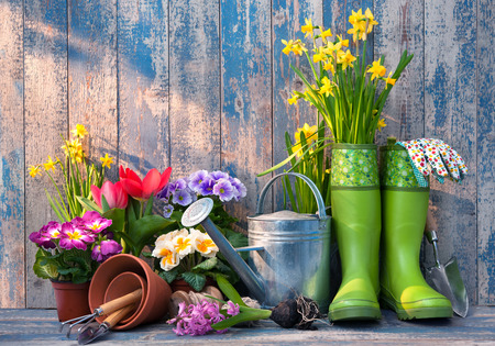 Gardening tools and flowers on the terrace in the garden Foto de archivo