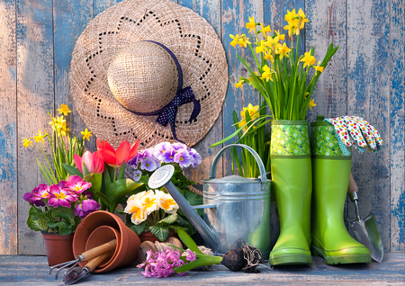 Gardening tools and flowers on the terrace in the garden Stock Photo