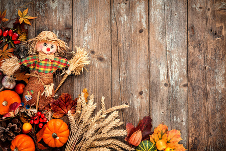 gourds: Colorful autumn background with a scarecrow decoration for Halloween and Thanksgiving