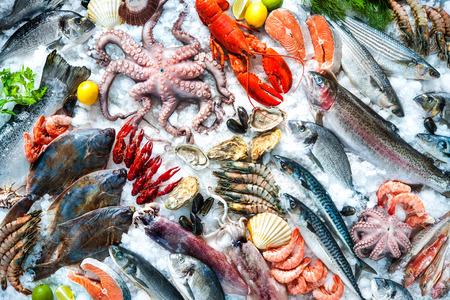 Frutti di mare su ghiaccio al mercato del pesce Archivio Fotografico - 55844567