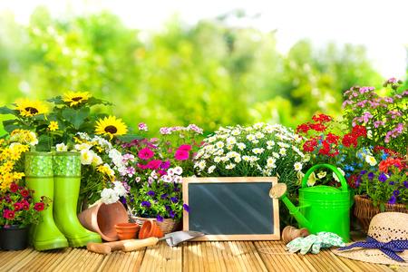 Tuingereedschap en bloemen op het terras in de tuin Stockfoto - 58717111