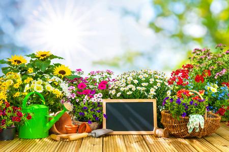 Attrezzi da giardinaggio e fiori sulla terrazza in giardino Archivio Fotografico - 58717117