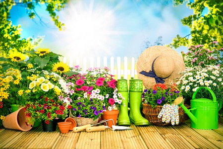 seed bed: Gardening tools and flowers on the terrace in the garden Stock Photo