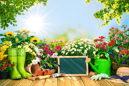 can: Gardening tools and flowers on the terrace in the garden Stock Photo