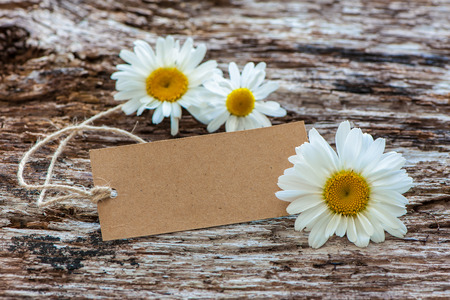 flores de cumpleaños: Daisy flowers with a vintage tag on wooden background