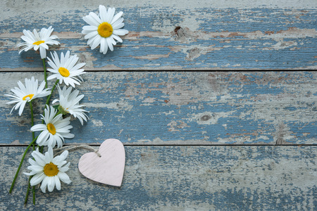 blue daisy: Daisy flowers with a heart shaped tag on old wooden background