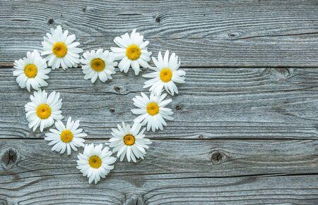 Daisy flowers in heart shape on old wooden board Reklamní fotografie