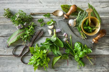 Erbe aromatiche fresche e spezie su tavola di legno. Vista dall'alto Archivio Fotografico - 61925587