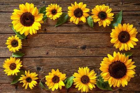 Autumn background with sunflowers on wooden board Фото со стока - 62207349