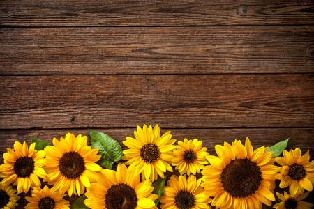 Herbst-Hintergrund mit Sonnenblumen auf einem Holzbrett Standard-Bild - 62207509