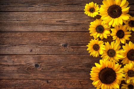 Herbst-Hintergrund mit Sonnenblumen auf einem Holzbrett
