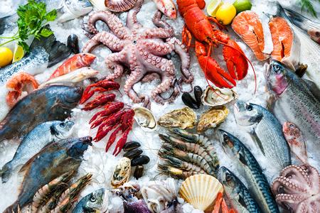comida: Mariscos en el hielo en el mercado de pescado