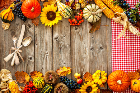 fall leaf: Colorful autumn border for Halloween and Thanksgiving