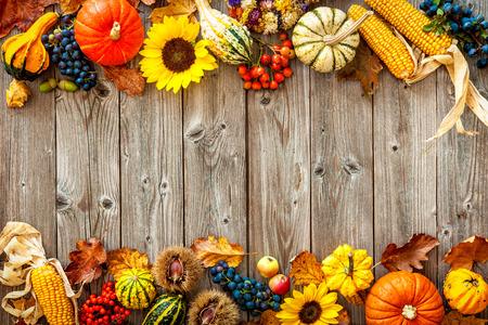 ハロウィーンやサンクスギビングのカラフルな秋の境界線 写真素材