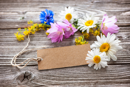 chamomile flower: Wild Flowers with a vintage tag on wooden background
