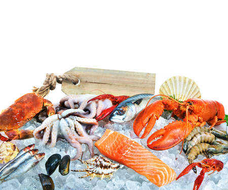 the dorada: Fresh fish and seafood arrangement on crushed ice