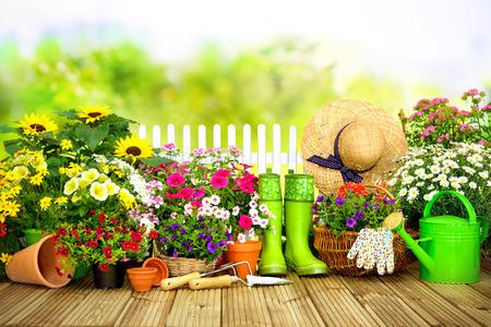 Attrezzi da giardinaggio e fiori sulla terrazza in giardino Archivio Fotografico - 73469647