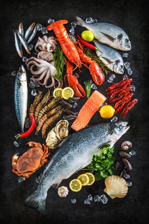 검은 돌 배경에 신선한 생선과 해산물 배열