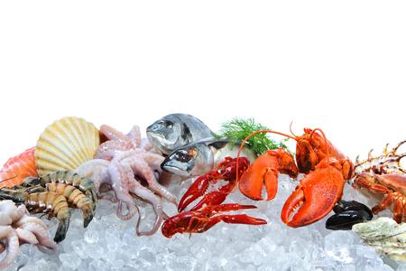 Świeże ryby i owoce morza rozmieszczenie na pokruszonym lodzie