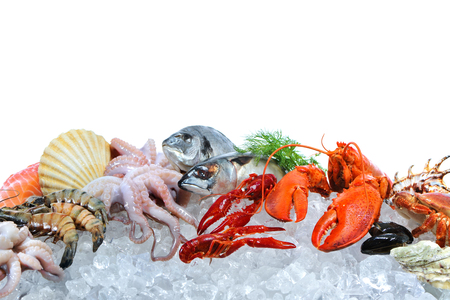 Arrangement de poisson frais et fruits de mer sur de la glace écrasée