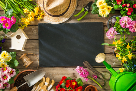 Gardening tools and spring flowers on wooden table Stock Photo
