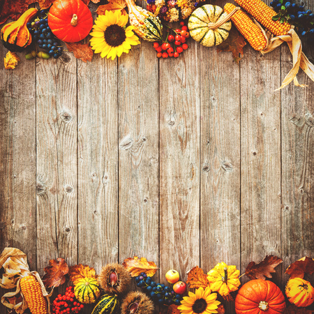 traditional: Colorful autumn border for Halloween and Thanksgiving