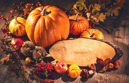 Autumn still life with pumpkins, fruits and berries with copy space on wooden table