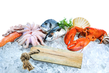 raw: Fresh fish and seafood arrangement on crushed ice