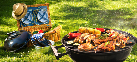 Barbecue picnic on a meadow Фото со стока
