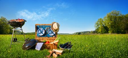 Barbecue picnic on a meadow Standard-Bild