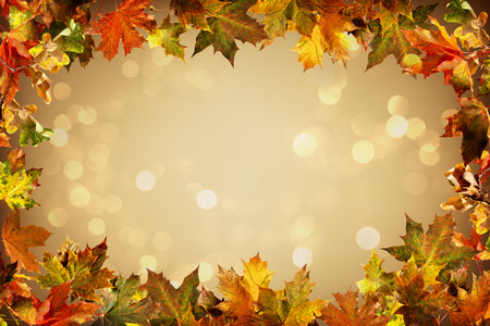 Falling autumn leaves natural background. Colorful foliage