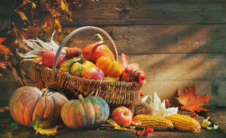 Thanksgiving pumpkins and falling leaves on  rustic wooden plank in barn
