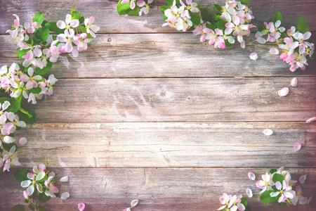 Rami fioriti di primavera su fondo in legno. Fiori di melo Archivio Fotografico - 93122908