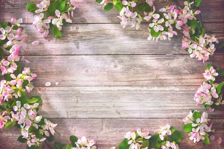 Rami fioriti di primavera su fondo in legno. Fiori di melo Archivio Fotografico - 93122927