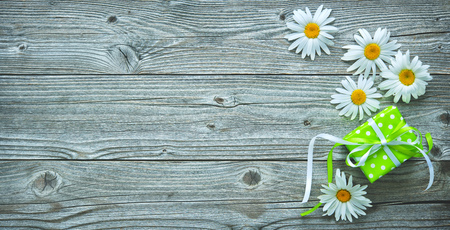 Gift box and daisy flowers on old wooden planks. Festive concept with copy space