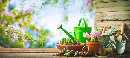 Gardening tools and spring flowers on the terrace in the garden Standard-Bild