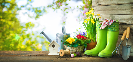Gardening tools and spring flowers on the terrace in the garden Foto de archivo