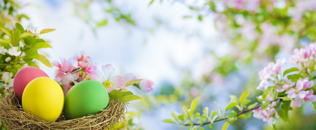 Spring background with colorful easter eggs