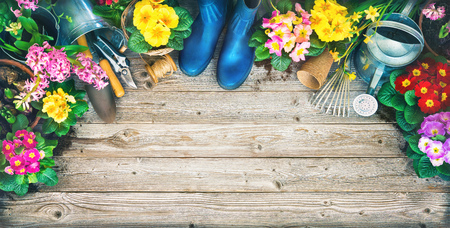 Gardening tools and spring flowers on the terrace in the garden Stock Photo