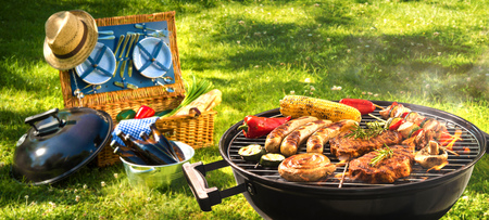 Barbecue picnic on a meadow Stock Photo