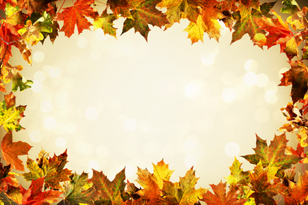 Autumn frame composed backdrop of colorful autumn leaves Imagens